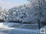 Neve in Provincia di Arezzo