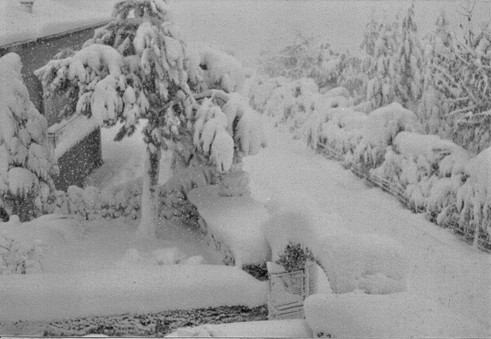 Stia 28 novembre 1978 (circa 500 m)