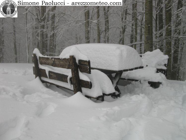 Burraia - Monte Falco - Campigna