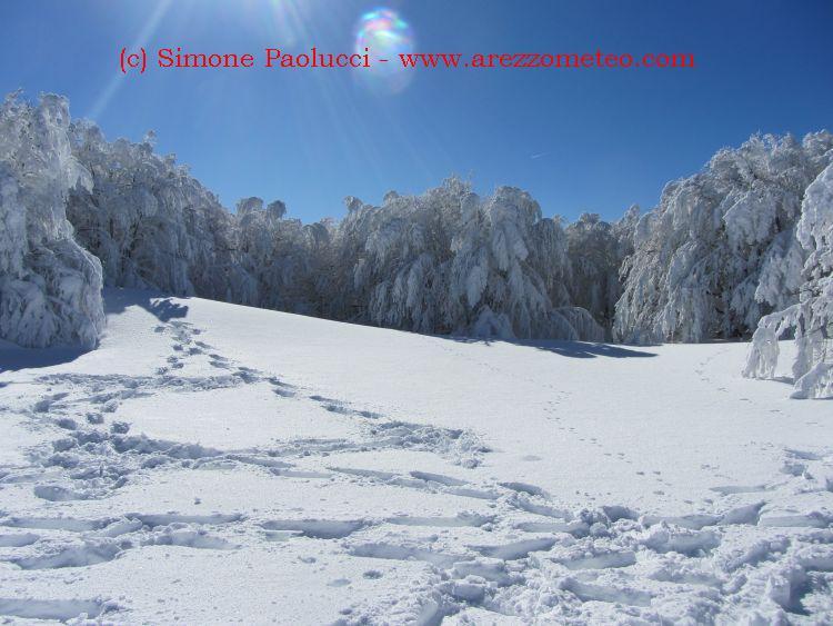 Monte Falco 30