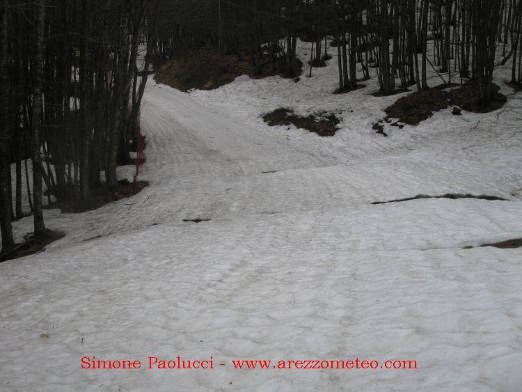Monte Falco 17