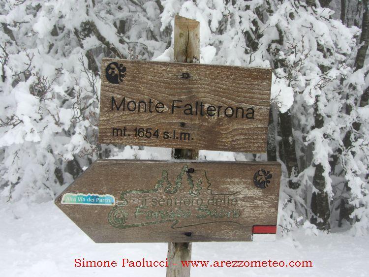 Monte Falco e Falterona 22
