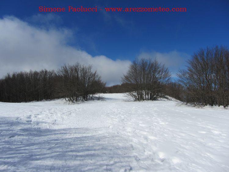 Monte Falco e Monte Falterona 2