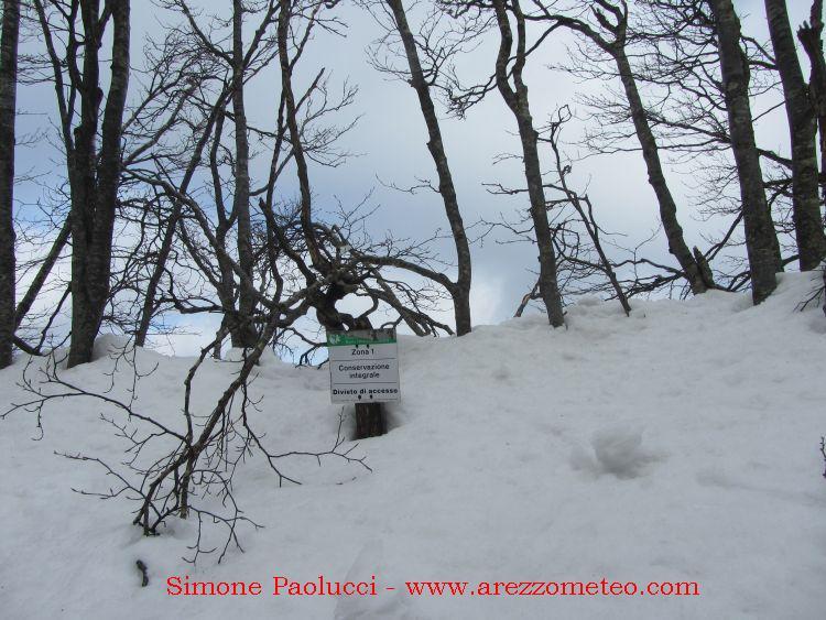 Monte Falco e Monte Falterona 4