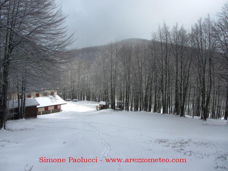 Monte Falco Campigna 15