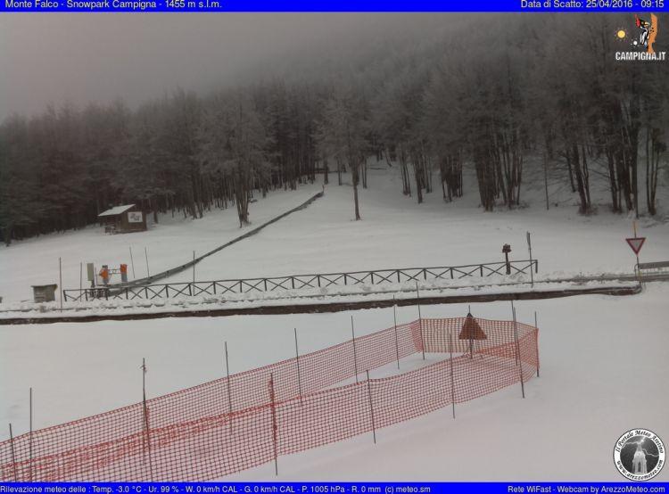 Monte Falco Campigna 16