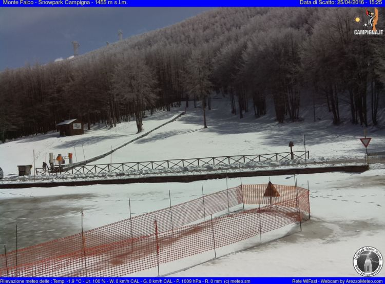 Monte Falco Campigna 17