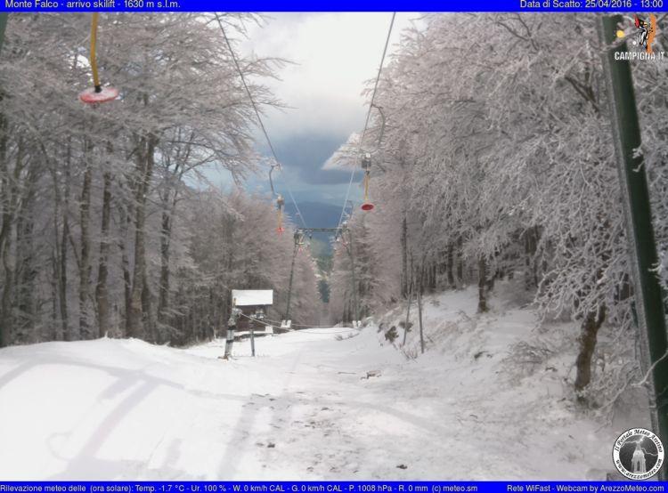 Monte Falco Campigna 21