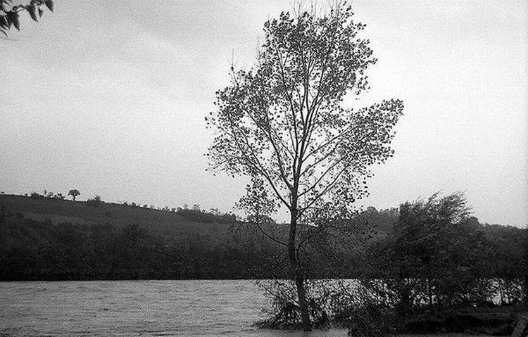 montevarchi-alluvione-novembre-1966-4