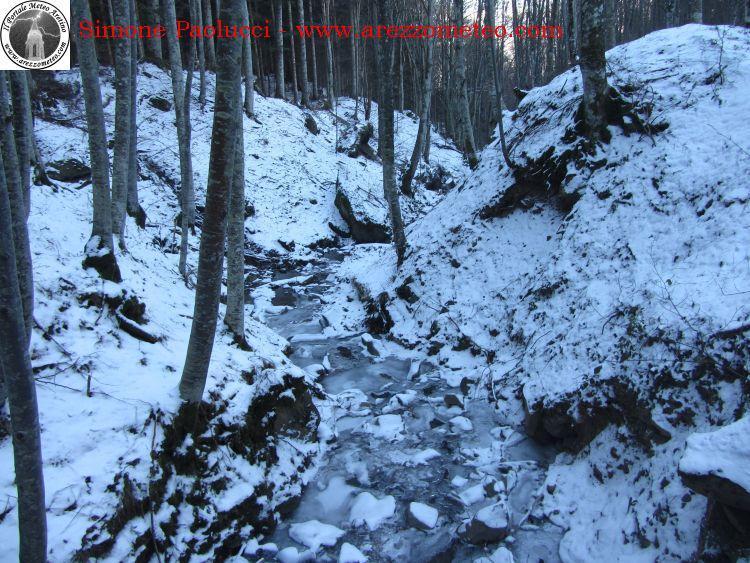 sentiero-natura-badia-prataglia-11