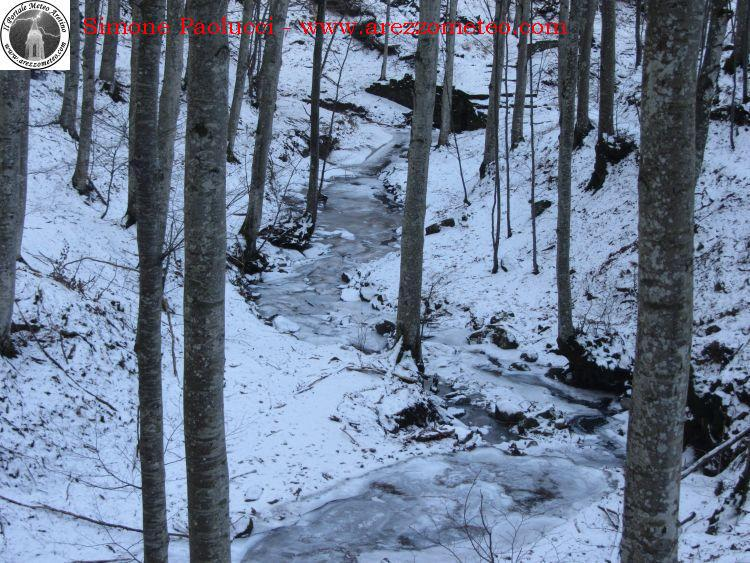 sentiero-natura-badia-prataglia-13