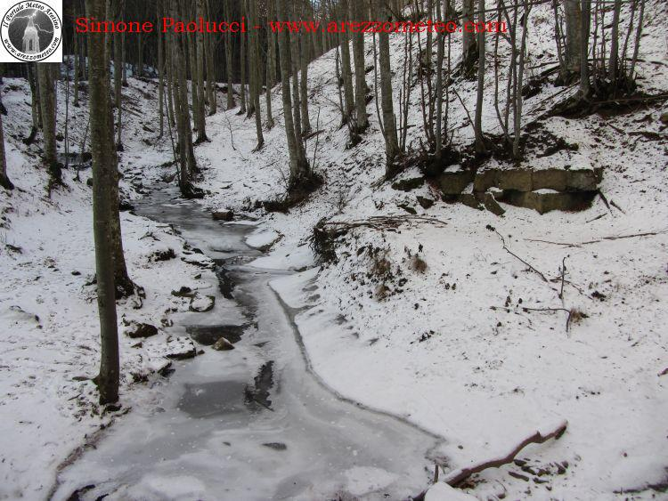 sentiero-natura-badia-prataglia-6